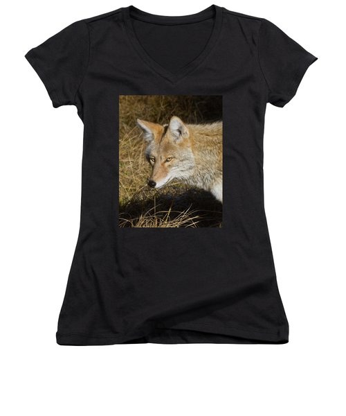 Coyote In The Wild Women's V-Neck