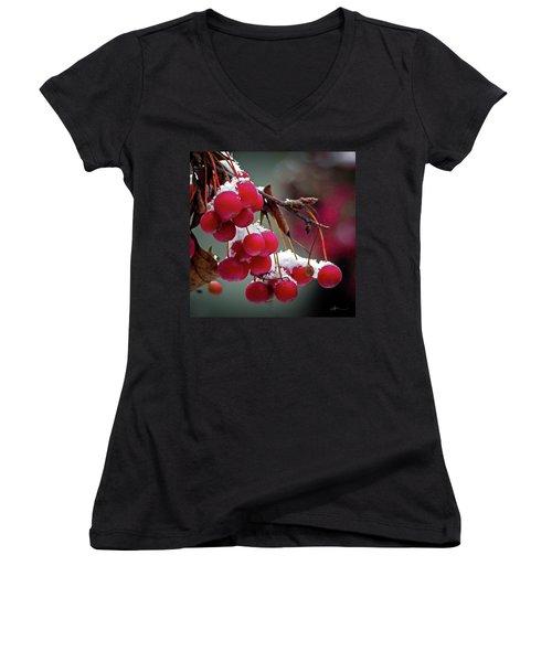 Crab Apples Snow Women's V-Neck T-Shirt