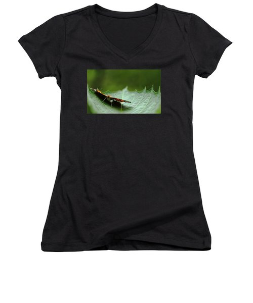 Cradled Painted Lady Women's V-Neck T-Shirt (Junior Cut) by Debbie Oppermann