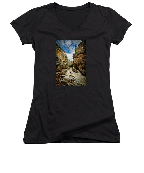 Crazy Woman Canyon Women's V-Neck T-Shirt (Junior Cut) by Rikk Flohr