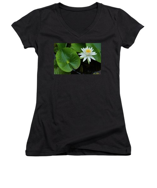 Crisp White And Yellow Lily Women's V-Neck