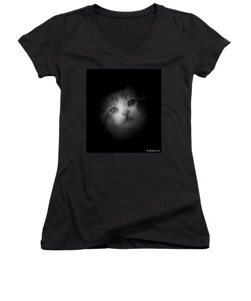 Women's V-Neck T-Shirt (Junior Cut) featuring the photograph Curiosity by Betty Northcutt