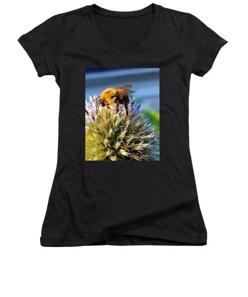 Curious Bee Women's V-Neck