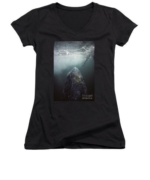 Curious Gray Whale And Tourist Women's V-Neck