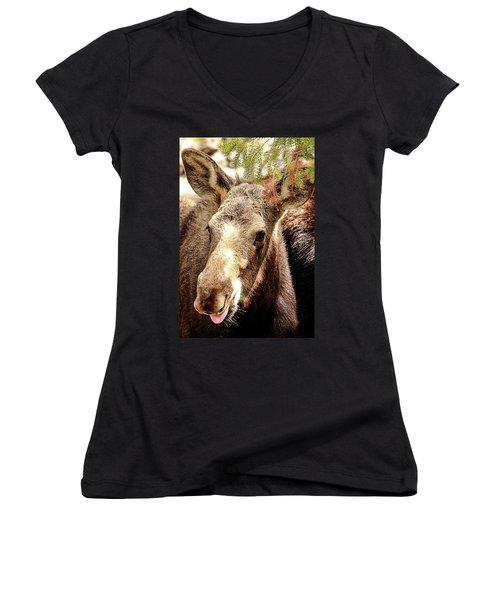 Cutie Moose Women's V-Neck (Athletic Fit)