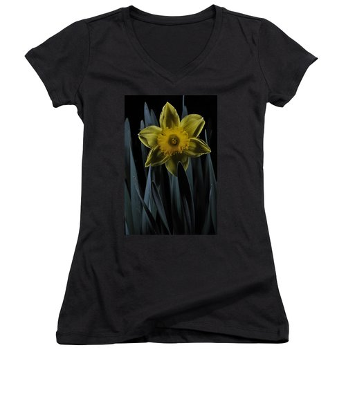 Daffodil By Moonlight Women's V-Neck