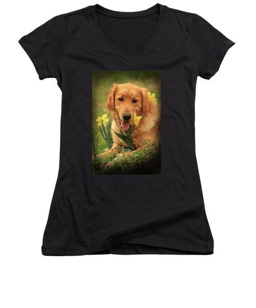 Daffodil Dreams Women's V-Neck T-Shirt