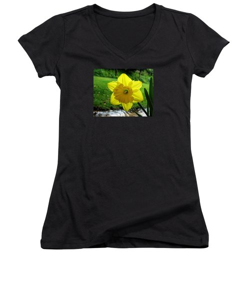 Daffodile In The Rain Women's V-Neck T-Shirt (Junior Cut) by Dorothy Cunningham