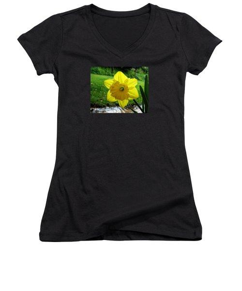 Daffodile In The Rain Women's V-Neck T-Shirt