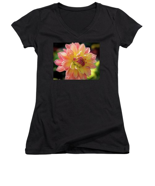 Women's V-Neck T-Shirt (Junior Cut) featuring the photograph Dahlia In The Sunshine by Phil Abrams