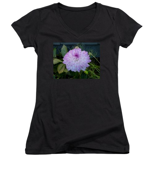 Dahlia Beautiful Women's V-Neck T-Shirt (Junior Cut) by Shirley Heyn