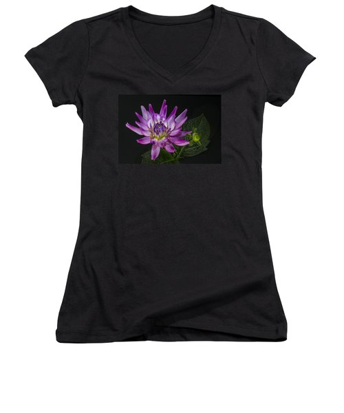 Dahlia Glow Women's V-Neck T-Shirt (Junior Cut) by Roman Kurywczak