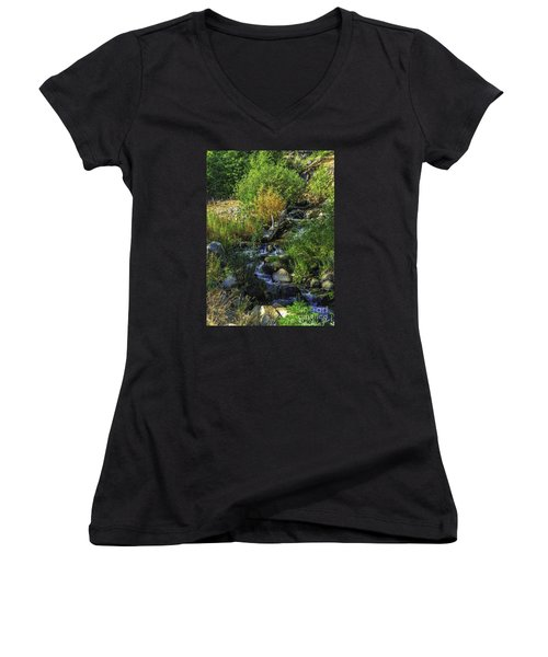 Women's V-Neck T-Shirt (Junior Cut) featuring the photograph Daily Greens-2 by Nancy Marie Ricketts
