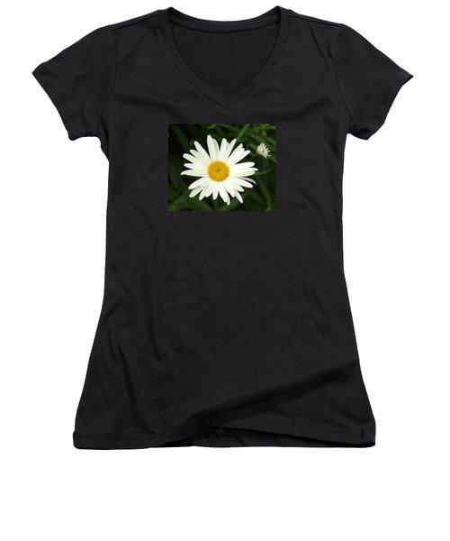 Daisy Days Women's V-Neck T-Shirt (Junior Cut) by Carol Sweetwood
