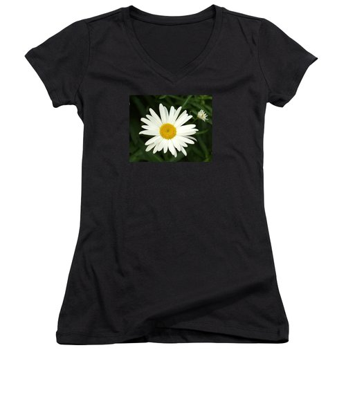 Daisy Days Women's V-Neck (Athletic Fit)