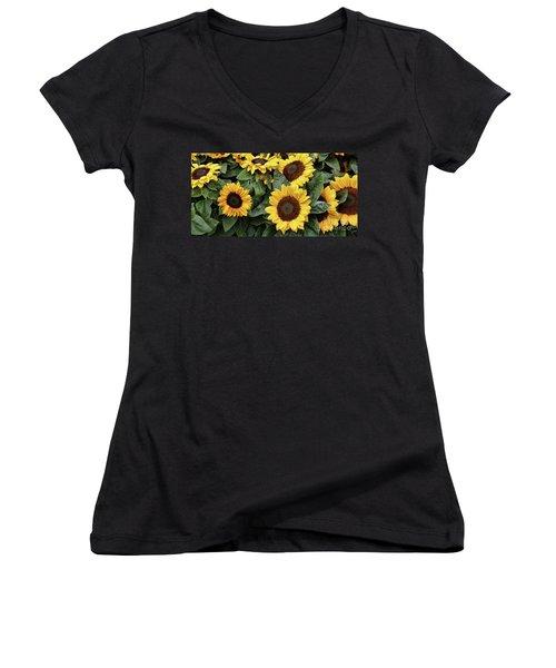 Daisy Yellow  Women's V-Neck T-Shirt (Junior Cut) by Chuck Kuhn