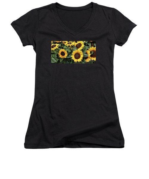 Daisy Yellow  Women's V-Neck