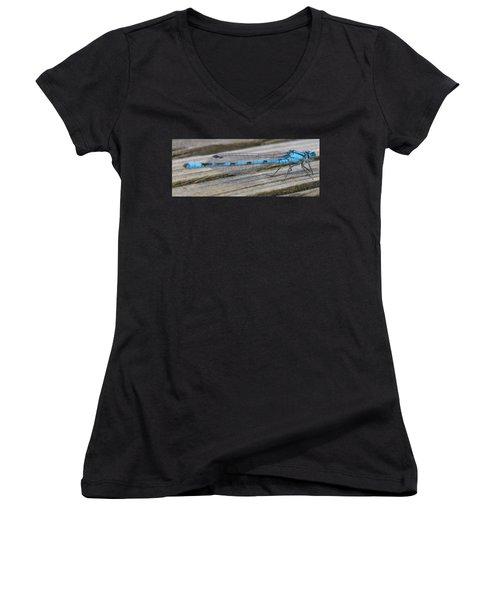 Damselfly Women's V-Neck T-Shirt (Junior Cut) by Darren Carpenter
