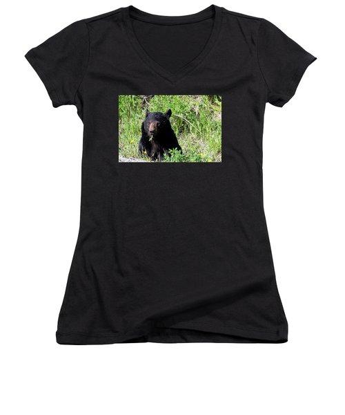 Dandelion Bear Women's V-Neck T-Shirt