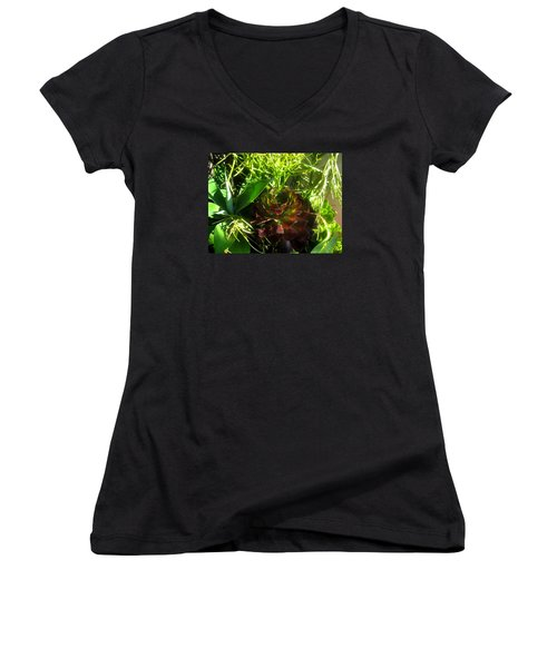 Dawning Succulents Women's V-Neck (Athletic Fit)