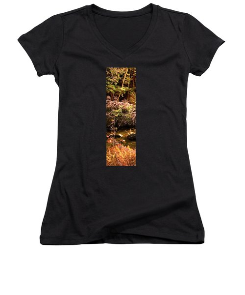 1 Of 6 Dead River Falls  Marquette Michigan Section Women's V-Neck T-Shirt (Junior Cut) by Michael Bessler