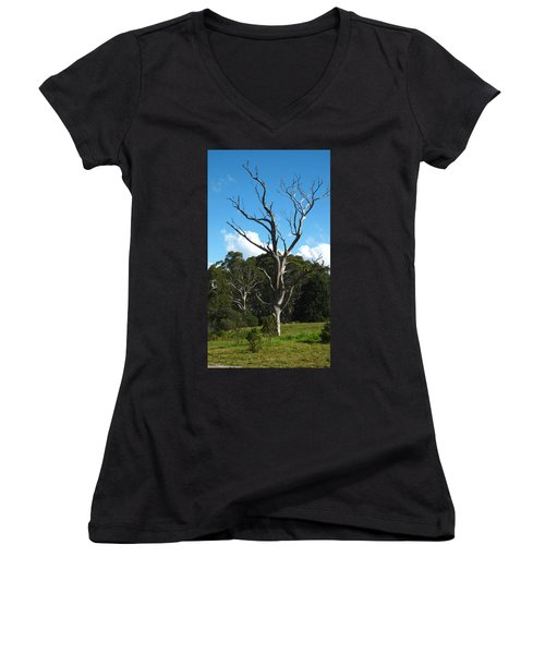 Dead Tree Women's V-Neck