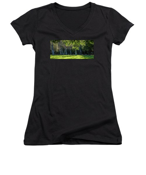 Deer In The Afternoon Sun Women's V-Neck