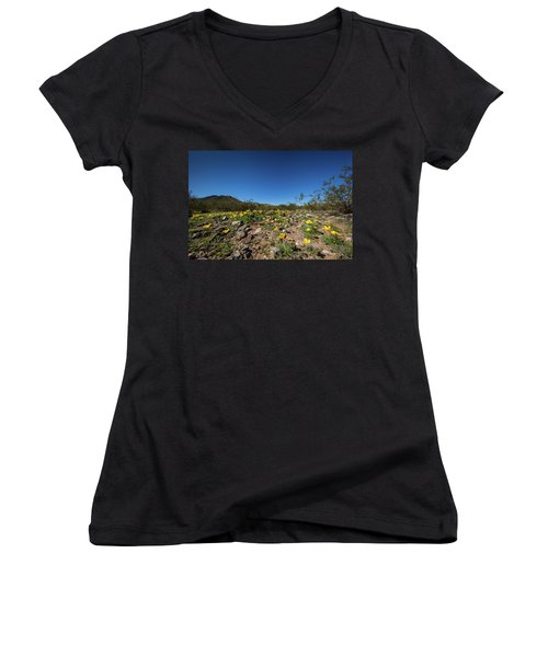 Women's V-Neck T-Shirt (Junior Cut) featuring the photograph Desert Flowers In Spring by Ed Cilley