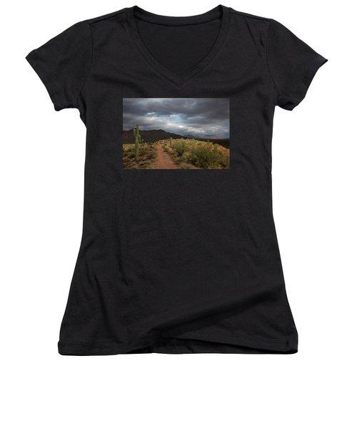 Desert Light And Beauty Women's V-Neck T-Shirt