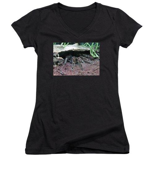 Desert Tarantula Women's V-Neck T-Shirt