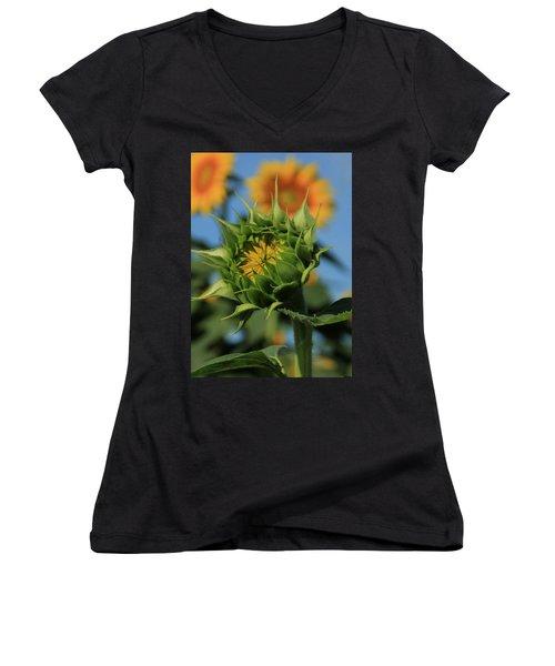Women's V-Neck T-Shirt (Junior Cut) featuring the photograph Developing Petals On A Sunflower by Chris Berry
