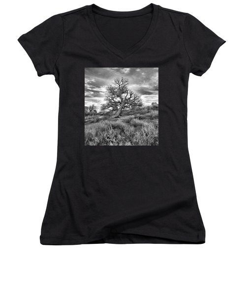 Devils Canyon Tree Women's V-Neck T-Shirt