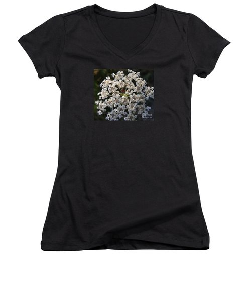 Dew On Queen Annes Lace Women's V-Neck