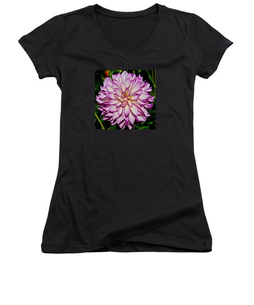Divine Dahlia Blessings  Women's V-Neck T-Shirt