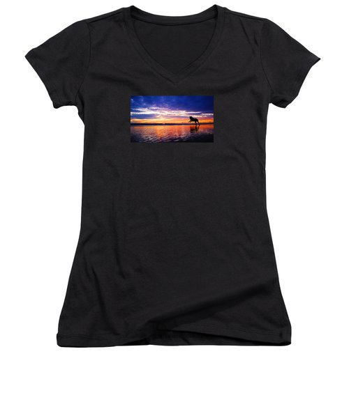 Dog Chasing Stick At Sunrise Women's V-Neck (Athletic Fit)