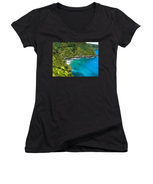 Women's V-Neck T-Shirt (Junior Cut) featuring the photograph Dolphin Cove by Debbie Karnes
