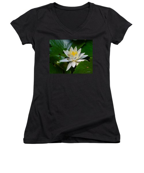 Dragonfly On Waterlily  Women's V-Neck (Athletic Fit)