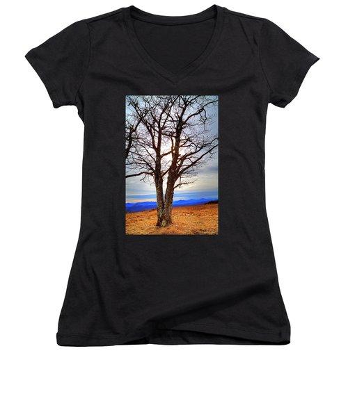 Dreamcatcher Women's V-Neck T-Shirt (Junior Cut) by Dale R Carlson