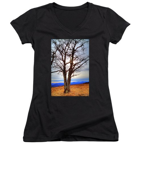 Dreamcatcher Women's V-Neck T-Shirt