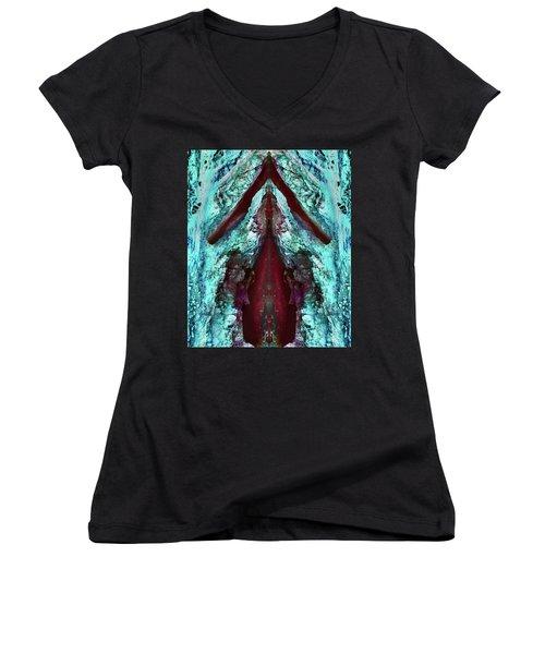 Dreamchaser #4843 Women's V-Neck T-Shirt