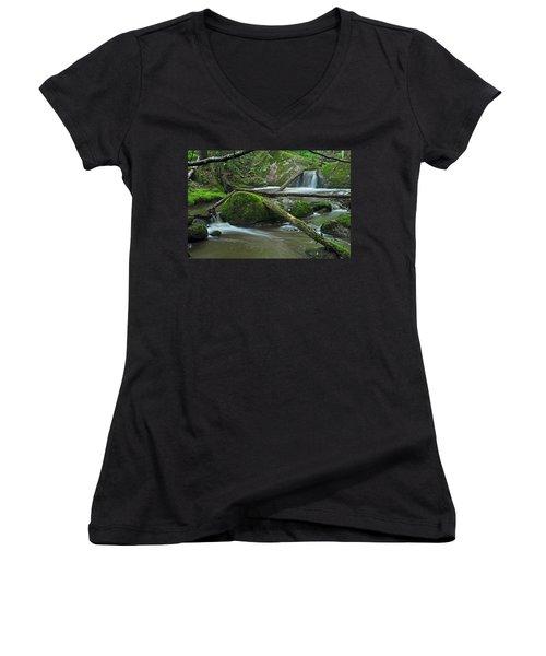 Dual Falls Women's V-Neck T-Shirt