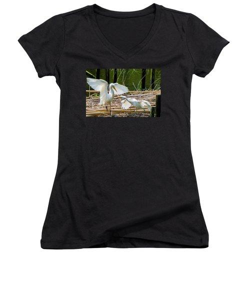 Dueling Bills Women's V-Neck T-Shirt (Junior Cut) by Kimo Fernandez