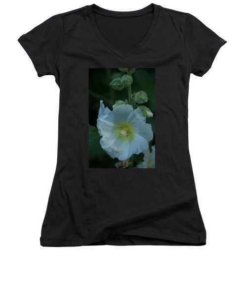 Dust Women's V-Neck