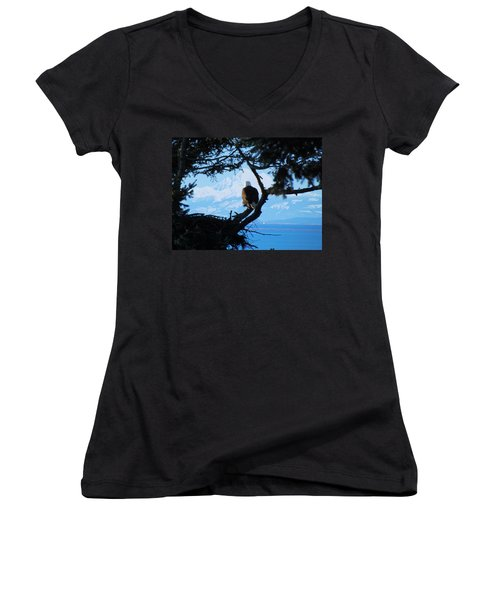 Eagle - Mt Baker - Eagles Nest Women's V-Neck T-Shirt