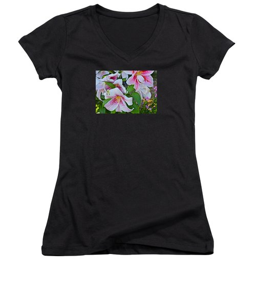 Early August Tumble Of Lilies Women's V-Neck T-Shirt (Junior Cut) by Janis Nussbaum Senungetuk