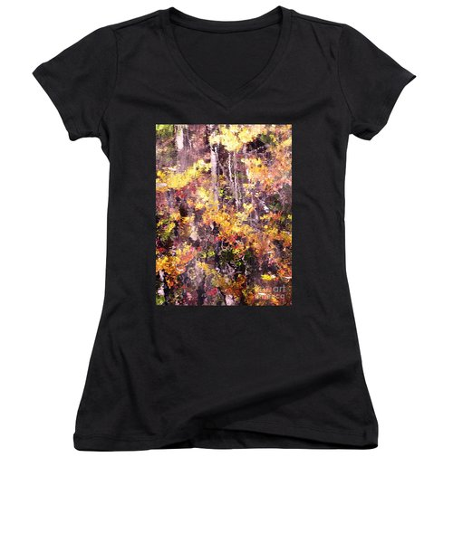 Earthy Water Women's V-Neck T-Shirt