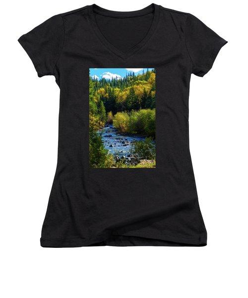 East Fork Autumn Women's V-Neck T-Shirt (Junior Cut) by Jason Coward