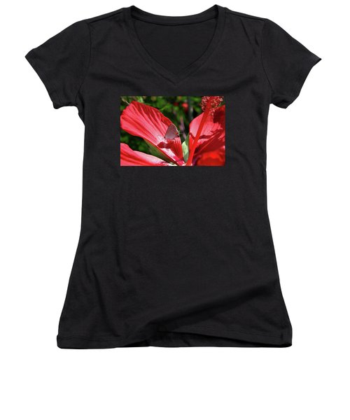 Eastern Tailed Blue Butterfly On Red Flower Women's V-Neck T-Shirt (Junior Cut) by Inspirational Photo Creations Audrey Woods