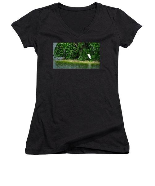 Egret Wakodahatchee Florida Wetlands Women's V-Neck T-Shirt