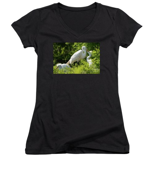 Egrets With Their Young Women's V-Neck